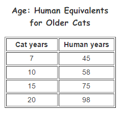 human age equivalents for older cats
